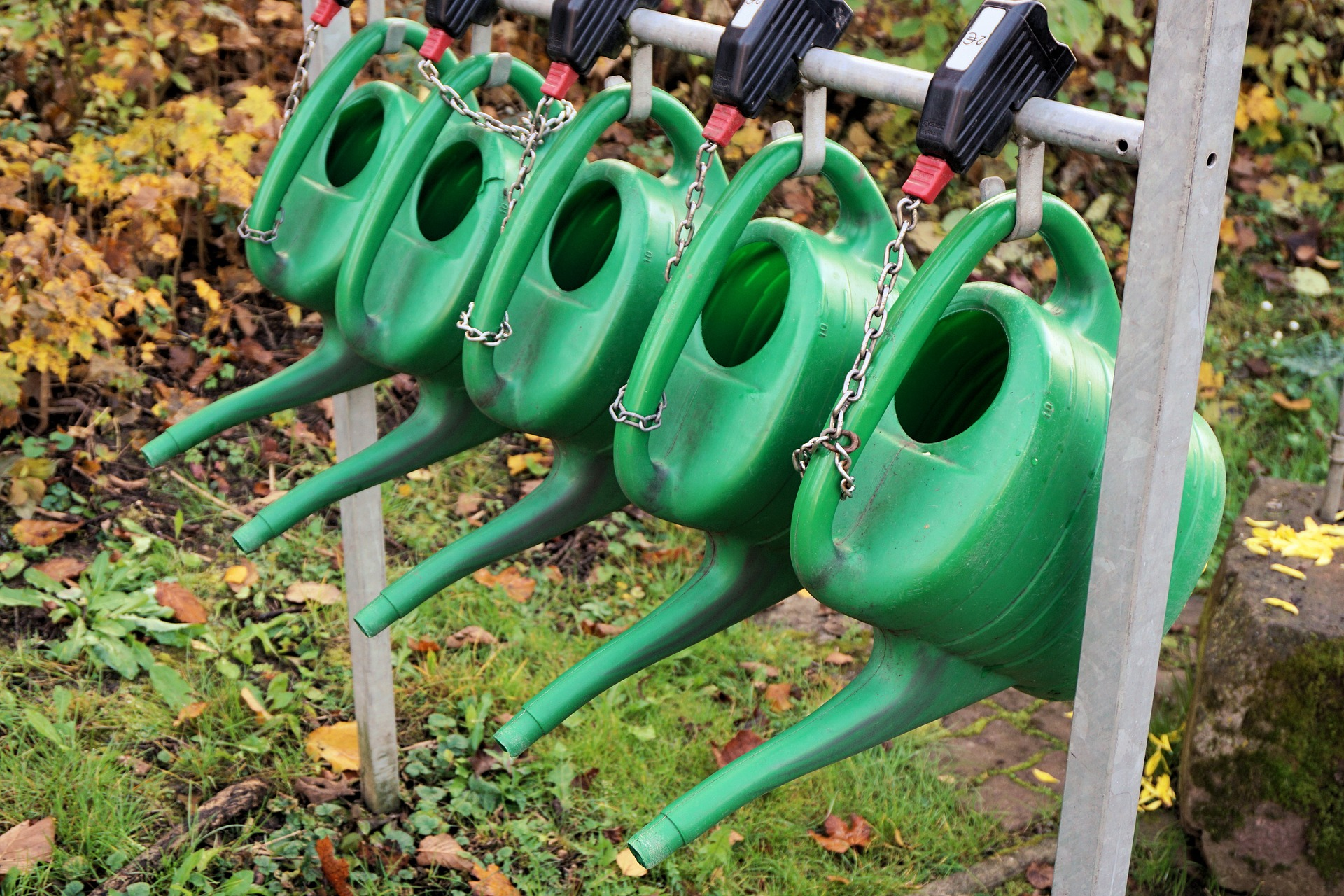 17002 watering cans 1039265 1920